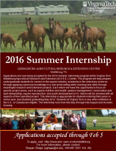 MARE Center Summer Internship