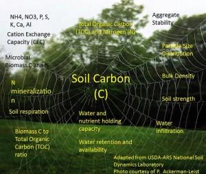 Soil_Carbon