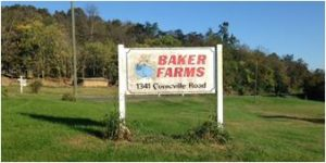 Baker Farms, Mount Jackson, Virginia