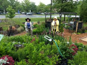 two master gardeners stand in garden