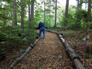 a master gardener tends a wooded path