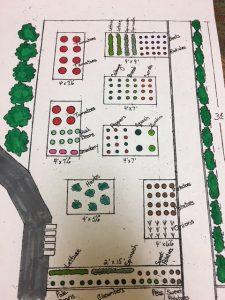 a drawn diagram of the garden